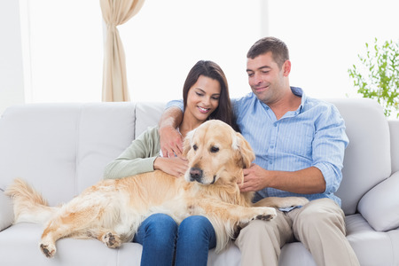 stroking: Happy couple stroking dog while sitting on sofa at home Stock Photo