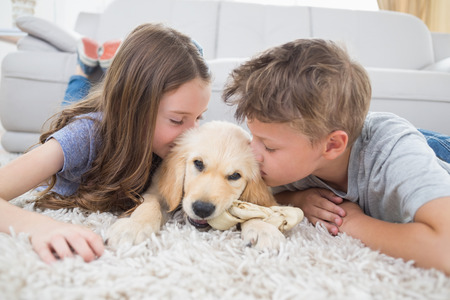 love life: Brother and sister kissing puppy on rug at home Stock Photo