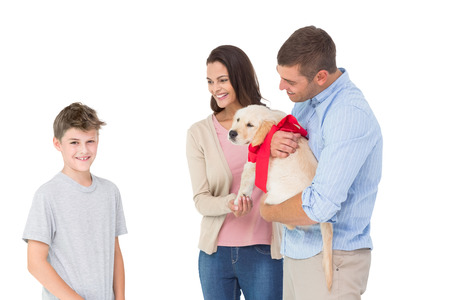 gifting: Happy mother and father gifting puppy to boy against white background Stock Photo