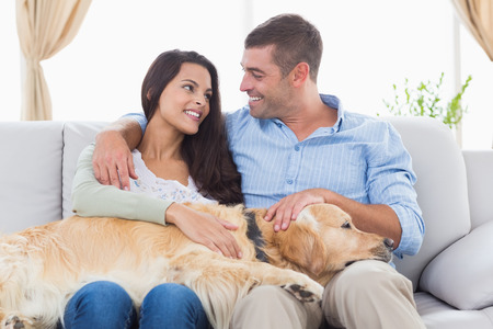 stroking: Happy couple stroking Golden Retriever while looking at each other on sofa at home