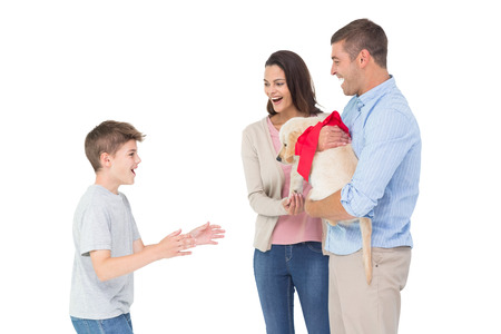 gifting: Happy mother and father gifting puppy to boy over white background Stock Photo