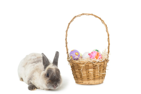 Easter bunny with basket of eggs on white background photo