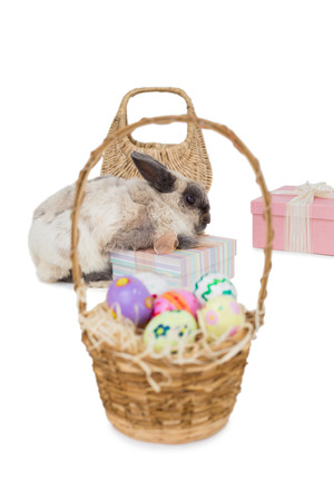 celebratory event: Easter bunny with gift boxes and wicker basket over white background