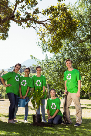 planting a tree: Environmental activists planting a tree in the park on a sunny day Stock Photo