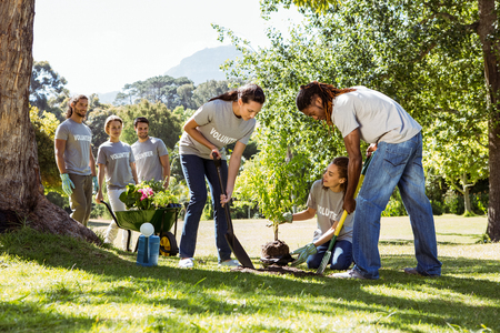 Team of volunteers gardening together on a sunny day