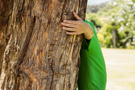 activist: Environmental activist hugging a tree on a sunny day