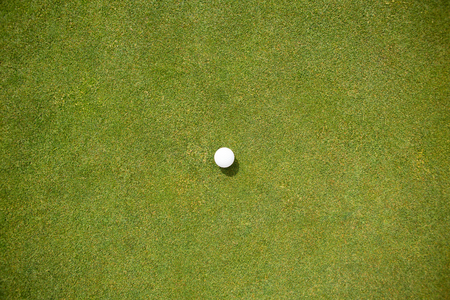recreational pursuits: Golf ball on the putting green on a sunny day