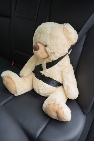 Teddy bear strapped in with seat belt in back seat of car photo