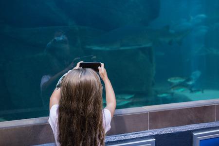 fish tank: Little girl looking at fish tank at the aquarium Stock Photo