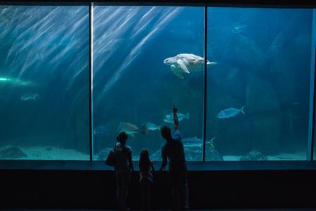 fish tank: Familia feliz mirando pecera en el acuario