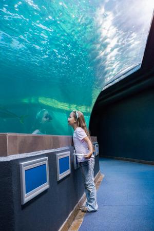 fishtank: Little girl looking at fish tank at the aquarium Stock Photo