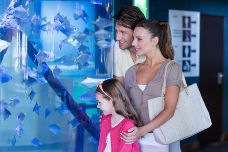 fish tank: Happy family looking at fish tank at the aquarium Stock Photo