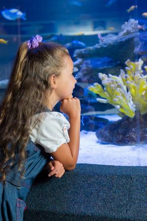 fish tank: Little girl looking at fish tank at the aquarium Foto de archivo