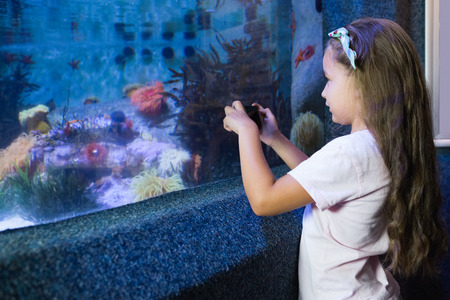 fish tank: Linda chica mirando pecera en el acuario