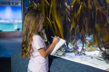 fish tank: Cute girl looking at fish tank at the aquarium Foto de archivo