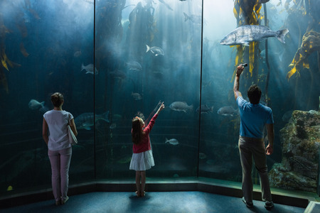 Family looking at fish tank at the aquarium
