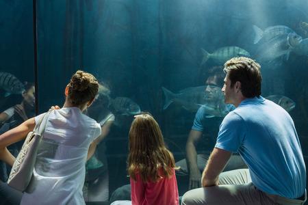 fish tank: Familia mirando el tanque de peces en el acuario