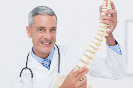 anatomical model: Smiling doctor showing anatomical spine in clinic