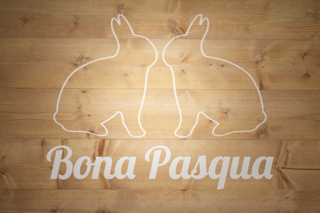 bleached: bona pascua against bleached wooden planks background Stock Photo
