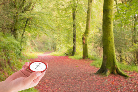 Hand presenting compass against peaceful autumn scene in forest photo