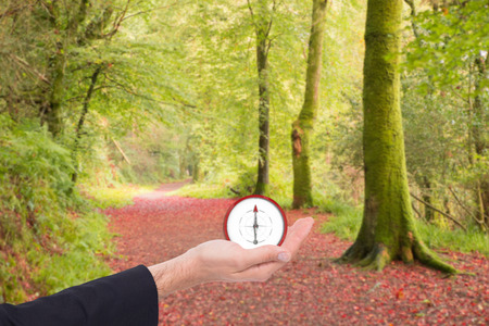 Close up of businessman with hand open against peaceful autumn scene in forest photo