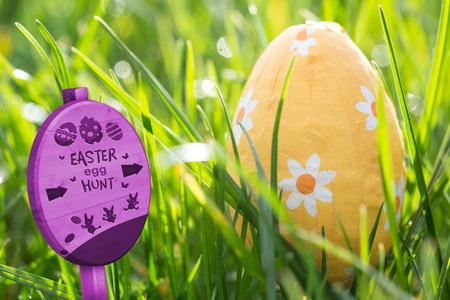 nestled: Easter egg hunt sign against easter egg nestled in the grass