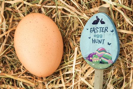 nestled: Easter egg hunt sign against egg nestled in straw