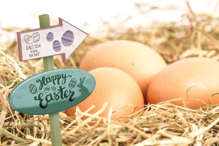 nestled: Easter egg hunt sign against three eggs nestled in straw