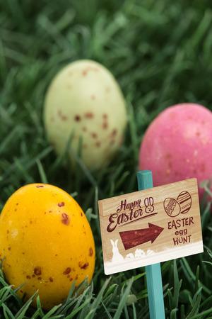 nestled: Easter egg hunt sign against three small easter eggs nestled in the grass