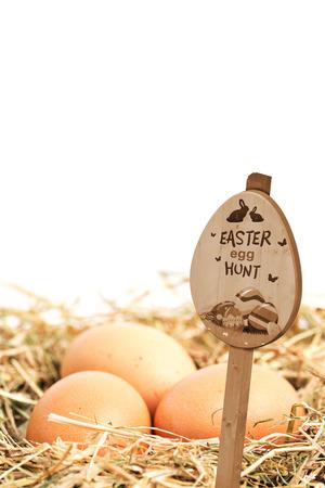 nestled: Easter egg hunt sign against three eggs nestled in straw nest