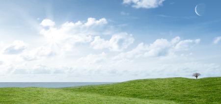 cielos abiertos: El campo y el cielo con espacio de copia