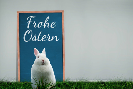 Ostern: Easter bunny against frohe ostern