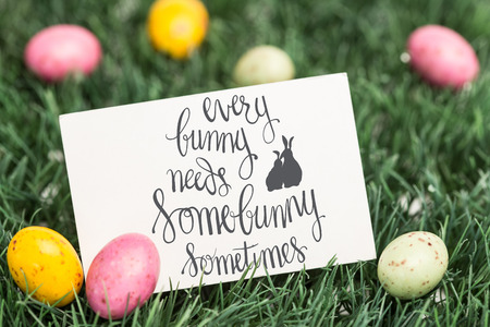 every bunny needs some bunny sometimes against blank greeting card with easter eggs Stock Photo