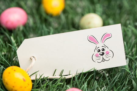 blank tag: easter bunny against blank tag with easter eggs Stock Photo