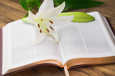 Lily flower resting on open bible on wooden table