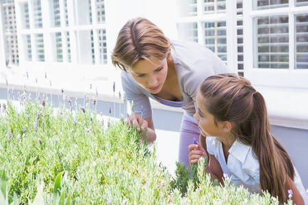 tending: Mother and daughter tending to flowers outside in the garden