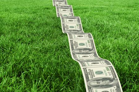 bumpy: Bumpy dollar road against grass Stock Photo