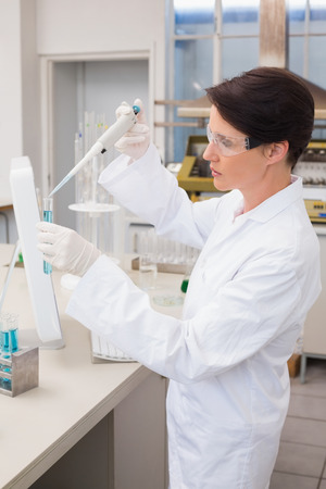 attentively: Scientist working attentively with test tube in laboratory