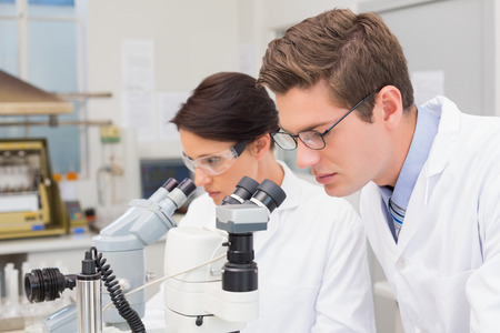 attentively: Scientists looking attentively in microscopes in laboratory