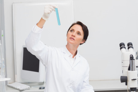 attentively: Scientist looking attentively at test tube in laboratory Stock Photo
