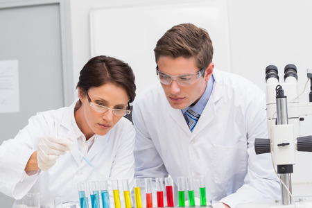attentively: Scientists looking attentively at test tube in laboratory