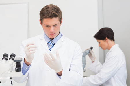 attentively: Scientists working attentively in laboratory