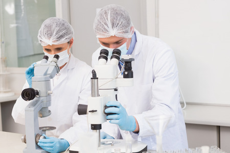 attentively: Scientists working attentively with microscopes in laboratory