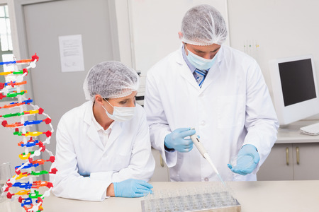 Scientists working with petri dish in laboratory