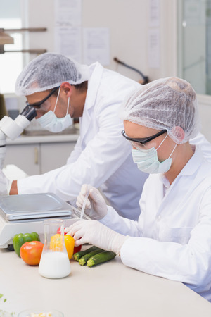 experimentation: Scientist doing experimentation on vegetables in the laboratory