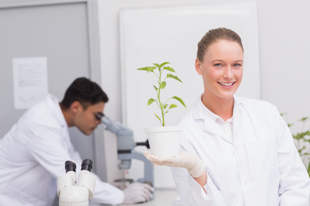 Happy scientist smiling at camera showing plant in the laboratory photo