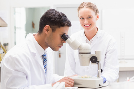 observing: Scientists observing petri dish with microscope in laboratory