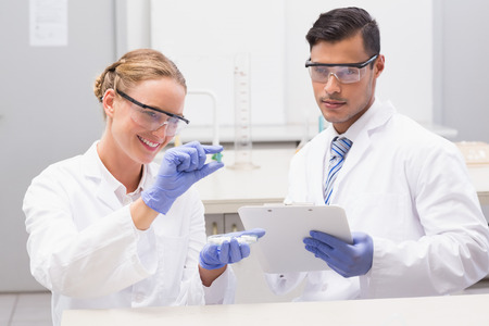 petri dish: Scientists looking at petri dish and taking notes in laboratory