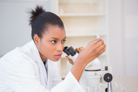 scientist woman: Concentrated scientist looking test tube in laboratory