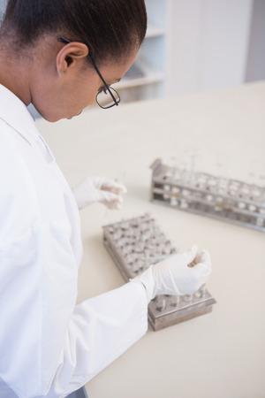 Scientist examining test tubes in laboratory